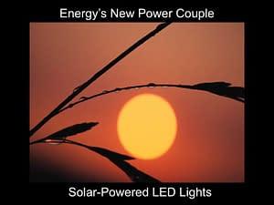 Solar-powered LED lights