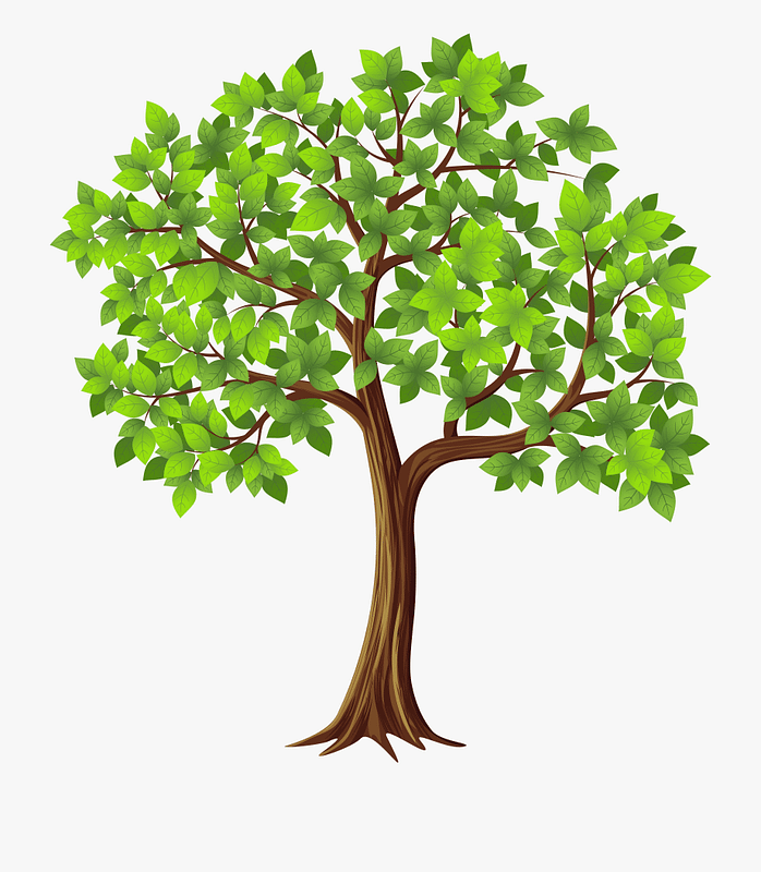 graphic of tree with green leaves and brown trunk