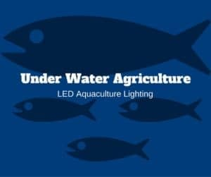 LED Aquaculture Lighting