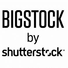 Bigstockphoto.Com Logo