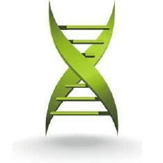 Medicalxpress.Com Logo