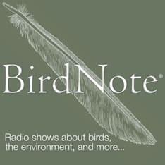 Birdnote.Org Logo