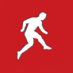 Dream11.Com Logo
