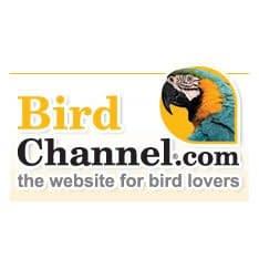 Birdchannel.Com Logo