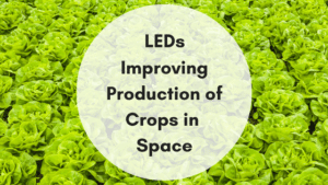 LEDs and Crops in Space