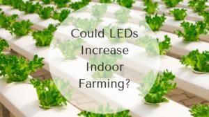 Could LEDsIncreaseIndoorFarming