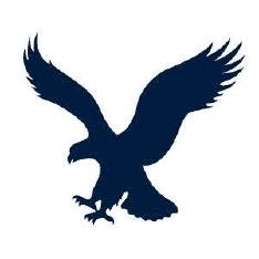 Ae.Com Logo