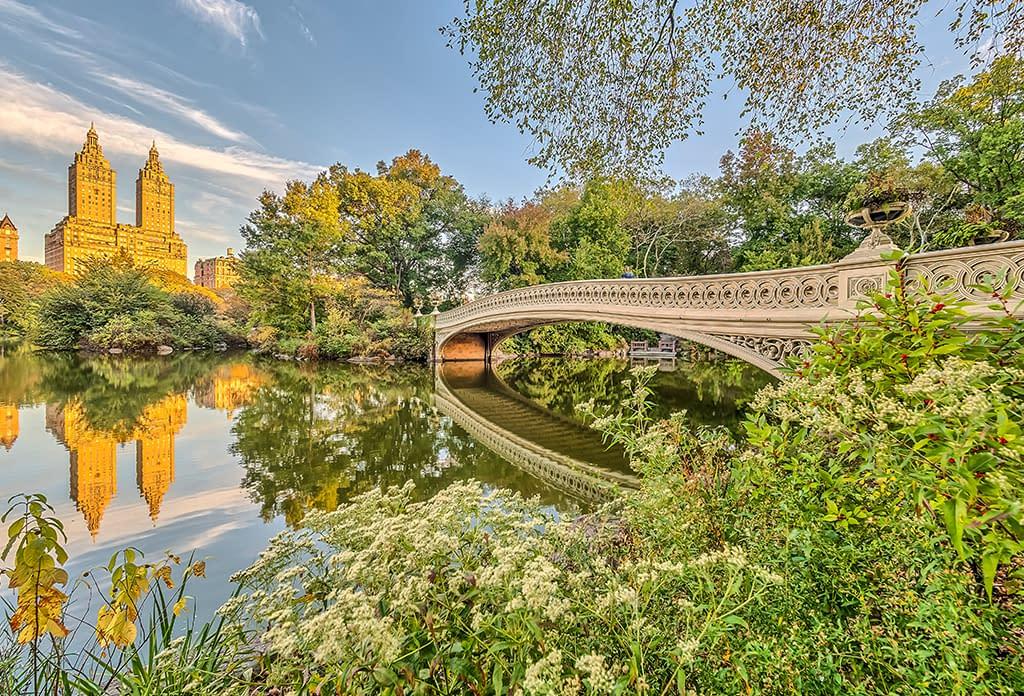 Bow Bridge Spring Central Park