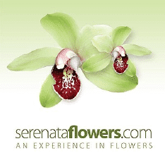 Serenataflowers.Com Logo
