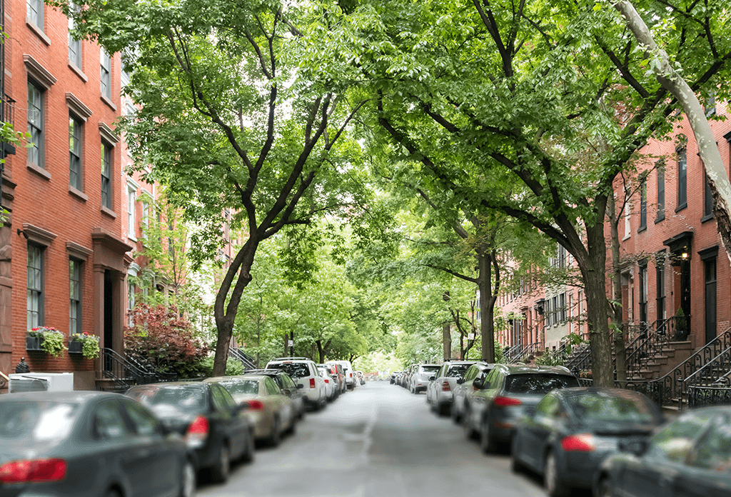 Tree Lined Street In West Village