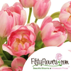 Fiftyflowers.Com Logo
