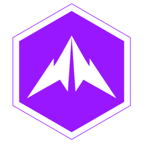 Purple 10x10 01