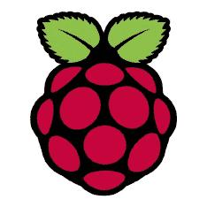 Raspberrypi.Org Logo