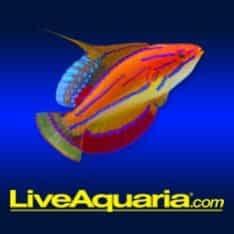 Liveaquaria.Com Logo