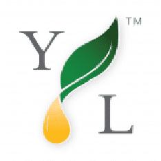 Youngliving.Com Logo